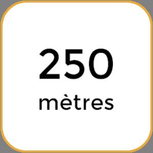 minus250m